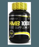 HMB 1000