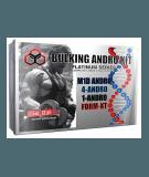 Bulking Andro Kit