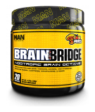 Brain Bridge