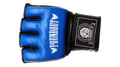 Gloves R01 (Blue)